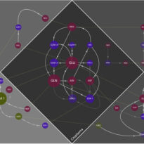 Molecular interaction networks I & II
