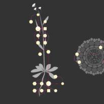 Visual Plant